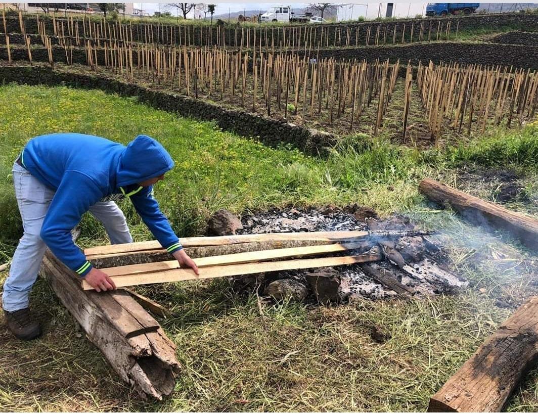 un contadino che lavora nella vigna per il nostroVino Naturale