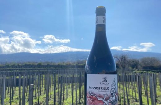 Etna wine. A short trip to discover the wines of the most beautiful volcano in the world