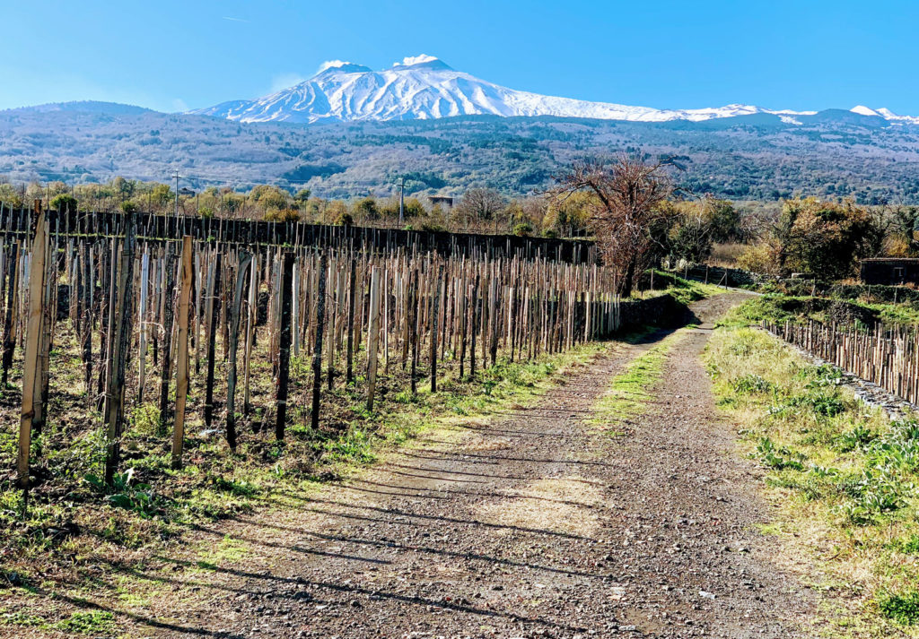 Strada dei vini dell'Etna