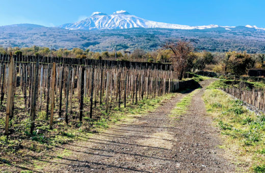 The Etna Wine route