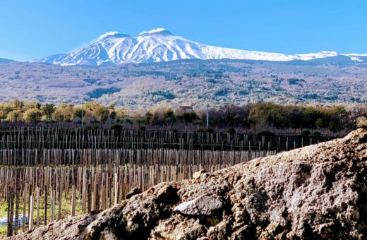 The pedogenesis of the Etna lava