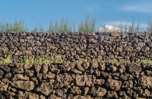 Terraces of the Etna