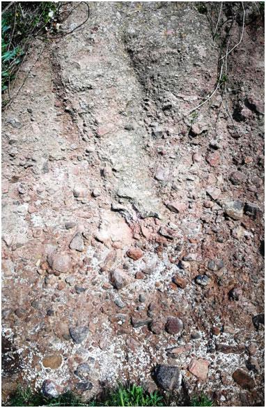 il suolo piroclastico di contrada purgatorio