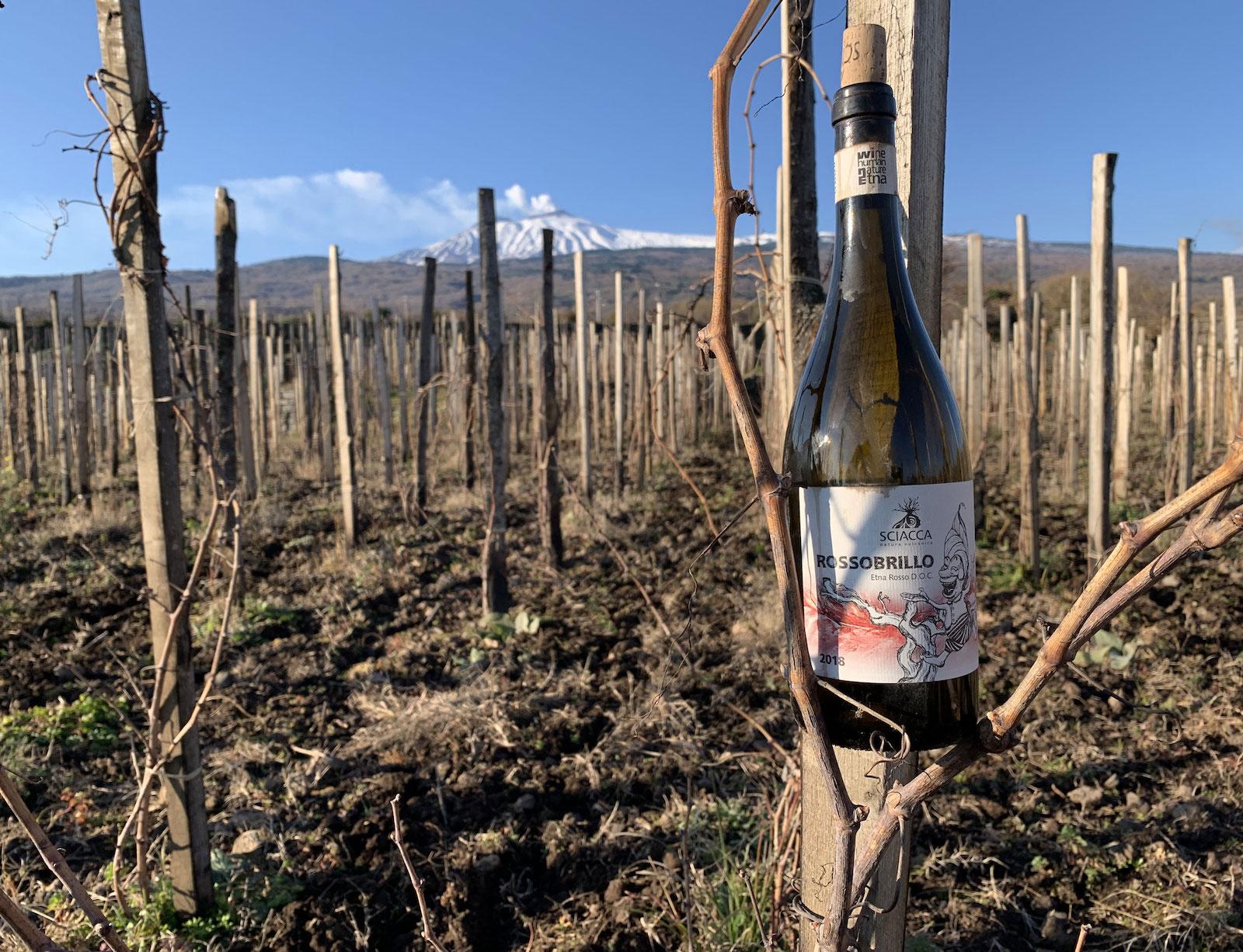 Assaggio vino dell'Etna- Rossobrillo